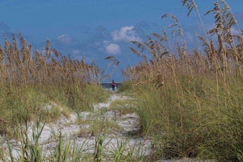 path through the sea oatssm